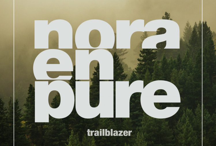 Trailblazer Artwork